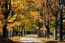 14 amazing places fall foliage