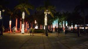 christmas light show lighted palm trees synced with music fort