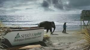 spiriva commercial elephant actress spiriva tv commercial beach ispot tv