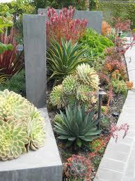 Modern Front Yard Desert Landscaping With Palm Tree And Best 25 Desert Landscape Backyard Ideas On Pinterest Desert