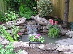 best tips for starting a small garden pond healthy water water
