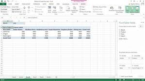 pivot tables for dummies how to filter excel pivot table data dummies
