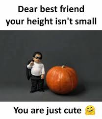 Cute Best Friend Memes - dopl3r com memes dear best friend your height isnt small you are