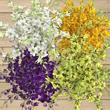 bulk baby s breath bulk flowers costco