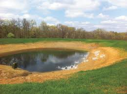 Is A Backyard Pond An Ecosystem Homegrown Catfish Ponds In Fisherman