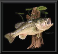 bass fishing home decor 15 largemouth bass reproduction on rock base for wall taxidermy