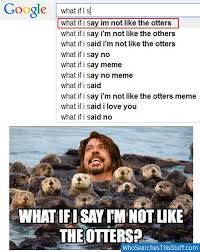 Foo Fighters Meme - if i say i m not like the otters