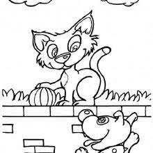 coloriages chat à tête tachetée fr hellokids com
