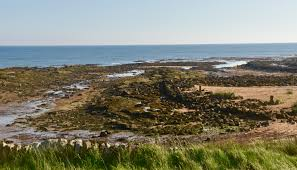 The Fife Coastal Path Home Kingsbarns Golf Links You Don U0027t Have To Be Royal U0026 Ancient To Be