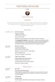 Staff Resume In Word Format bar staff resume sles visualcv resume sles database