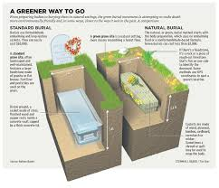cost of caskets a greener way to go ecoclimax