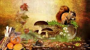 cute fall desktop wallpaper hey yeah funny fuzzy animal cute squirrel desktop photo squirrel