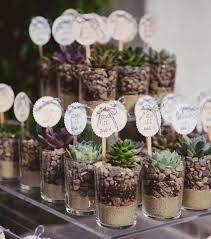 plant wedding favors succulent wedding favours plant wedding favours ideas succulent