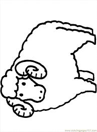 coloring pages sheep mammals u003e sheeps free printable coloring