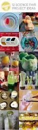 the 25 best science fair ideas on pinterest kids science fair