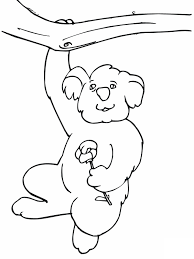 cute koala coloring pages koala coloring pages image 10 ppinews