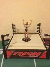 those who own their own professional wrestling ring what made you