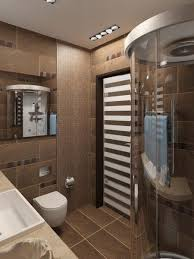 Toilet And Bathroom Wall Design At Male Apartment Interior - Toilet and bathroom design