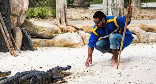 Alligators In Georgia Map Florida U0027s Big Cypress Seminole Indian Reservation Nature And