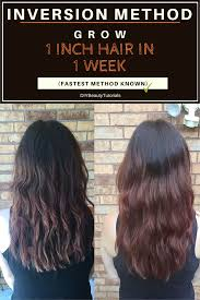 1 inch of hair inversion method grow 1 inch of hair in 1 week fastest results