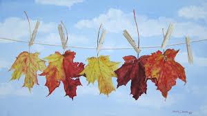Autumn Colors Fall Colors