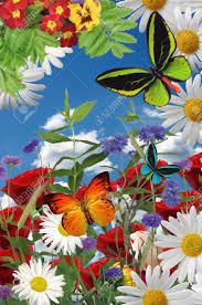 Beautiful Garden Images A Beautiful Garden Illustration Flowers Butterflies Stock Photo