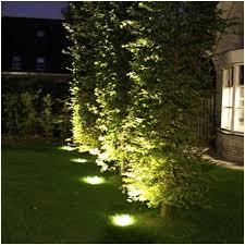 Landscape Lighting Trees Landscape Lighting In Trees Enhance Impression Erikbel Tranart