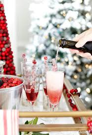 Hosting A Cocktail Party - host a crantastic cocktail party cranberry drinks u0026 appetizers