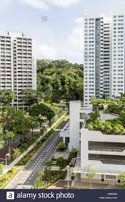 rooftop gardens feature in new public hdp apartments in singapore