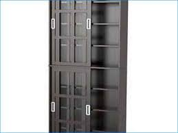 Cd Storage Cabinet With Doors by Cd Storage Cabinet Dvd Vhs Cd Storage Cabinet Mueble Para Dvd Cd
