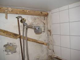 Mold Growing In Bathroom 19 Best About Black Mold Images On Pinterest Mold Removal