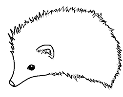 hedgehog coloring pages how to draw hedgehog coloring pages coloring sun