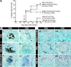 whats included in 96u immunomodulatory dendritic cells require autologous serum to