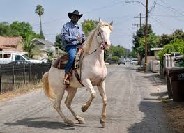 riding and roping in the land of rap meet the cowboys of compton
