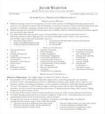 executive resume exle creative executive resume sle word executive resume template 12