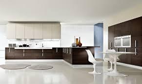 Modern Kitchen Interiors Kitchen Modern Kitchen Interior Design Images Modern Kitchen