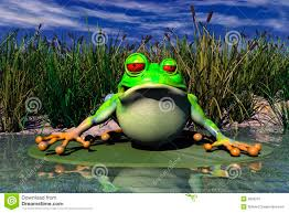 a frog sitting in pond stock photo image 6830210