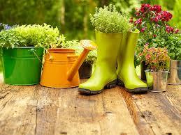 flower gardening tips for beginners boldsky com