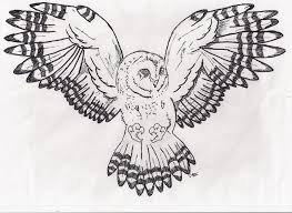 Patterned Flying Owl Drawing Illustration Owl Drawing By Notgabs Deviantart Com On Deviantart Drawings