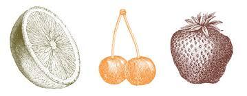 best orange color colors that influence food sales jenn david design