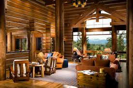 home interior products for sale lifeline interior hazelnut log home stain and perma white