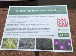 Native Home Design News Huntly Fire Station U0027s Native Garden Country Fire Authority