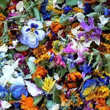 Real Flower Petal Confetti - dried flowers confetti petal wedding confetti flower petals