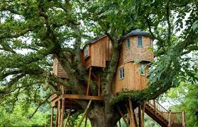treehouse homes for sale tree house homes tree houses bower house construction architecture