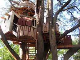 attractive tree house design showcasing shelter and roof