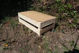 petit composteur de cuisine jardin j ai un nouvelle poubelle dans ma cuisine ou comment