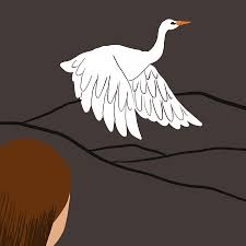 Heron Meaning by A White Heron Critical Essays Enotes Com