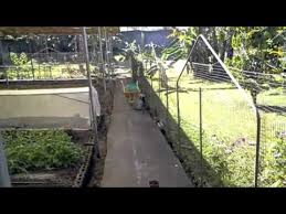 Backyard Organics Organic Farming In The Philippines Welcome To The Eco Backyard