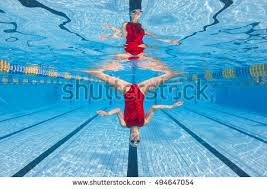 Inside Swimming Pool Synchronized Diving Stock Images Royalty Free Images U0026 Vectors