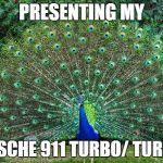 Peacock Meme - peacock meme generator imgflip